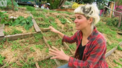 youtube_GoodLifePermaculture_Home&Life