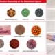 youtube_TAUVOD_NanoparticlesAsAntivirals